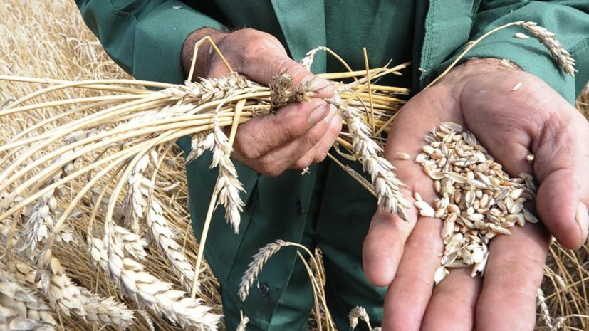 В Свердловской области заявили о снижении доли некачественной сельскохозяйственной продукции