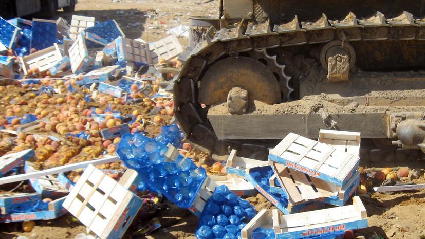 Минсельхоз оценил идею запретить уничтожение санкционных продуктов