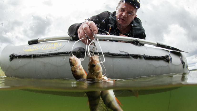 Эксперт прокомментировал новые правила любительской рыбалки