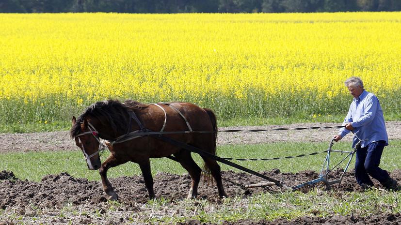 «Остался последний ресурс»: как Киев планирует лоббировать в США сельхозреформы на Украине