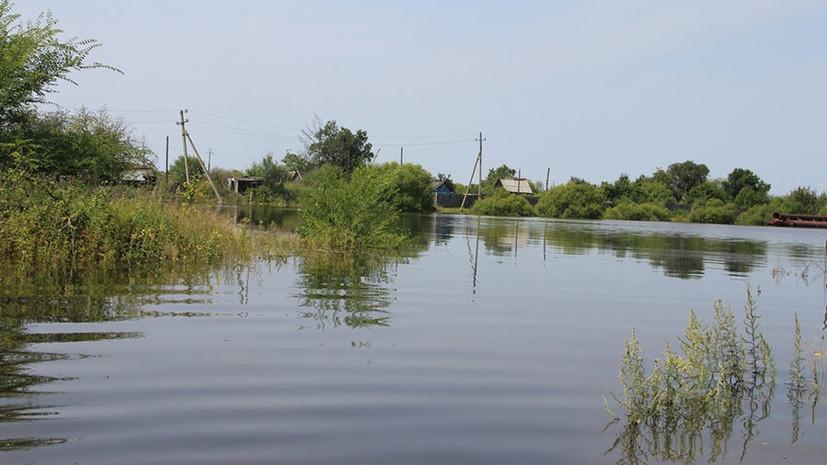 На гребне паводка: в Хабаровском крае ждут новую волну подтоплений из-за тайфунов