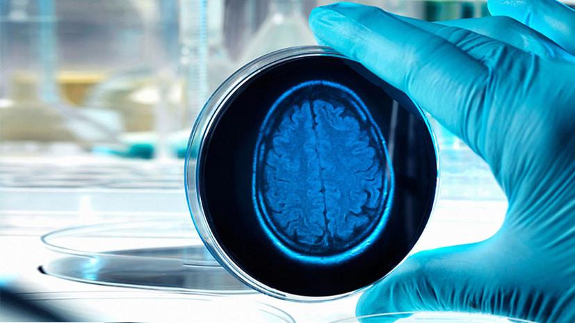 Учёным удалось омолодить старые клетки мозга у крыс