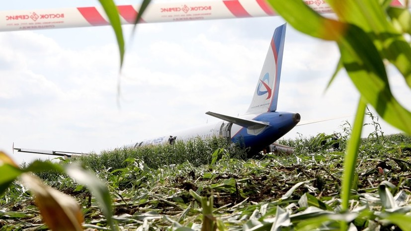 Командир аварийно севшего А321 принёс извинения пассажирам рейса