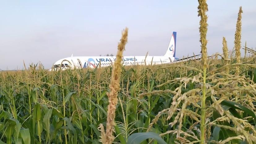 Экипаж аварийно севшего А321 пригласили на отдых в Крым