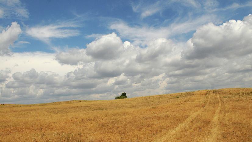 Ущерб от засухи в Забайкалье превысил 200 млн рублей