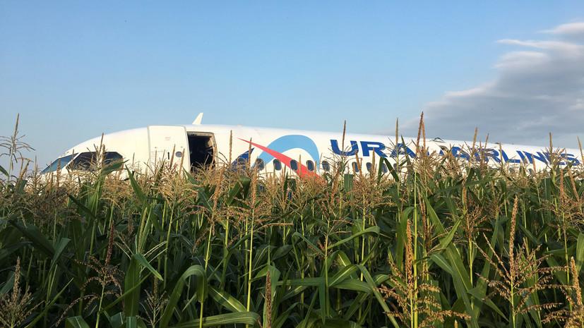 В Подмосковье начали разбирать самолёт А321