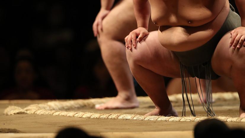 Сборные России и Японии по сумо проведут матчевую встречу в рамках ВЭФ