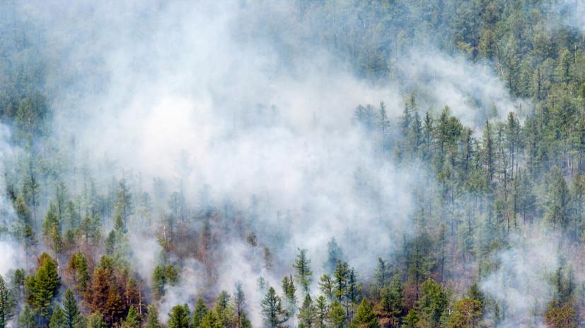 На севере Бурятии сняли введённый из-за пожаров режим ЧС