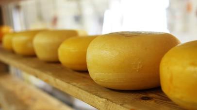 В Подмосковье начали приём заявок на получение грантов производителям сыра