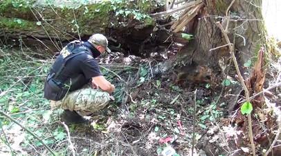 Тайник с двумя взрывными устройствами: ФСБ предотвратила теракты в Кабардино-Балкарии