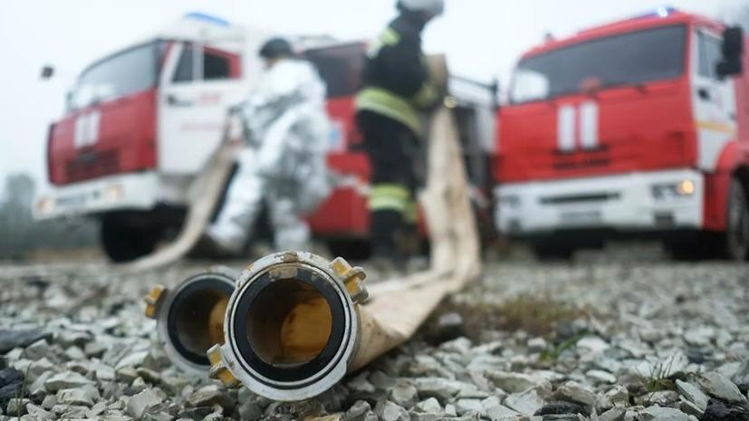 Правительство России скорректировало бюджет из-за лесных пожаров