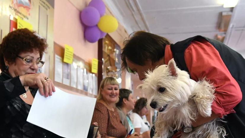 В Крыму ответили на протест МИД Украины из-за местных выборов