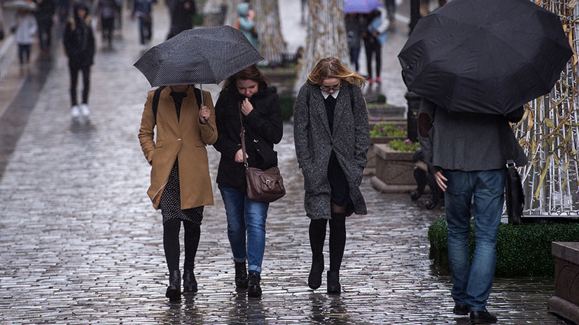 Погода опережает календарь: на следующей неделе столичный регион ждёт сильное похолодание