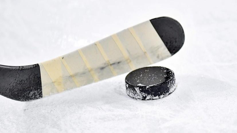 Двое хоккеистов пожизненно дисквалифицированы за драку на матче в Новосибирске