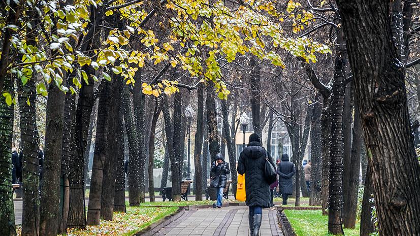 «Каждая последующая ночь будет холоднее предыдущей»: синоптики сообщили о заморозках в Центральной России на выходных