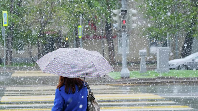 В Гидрометцентре прогнозируют мокрый снег в Москве