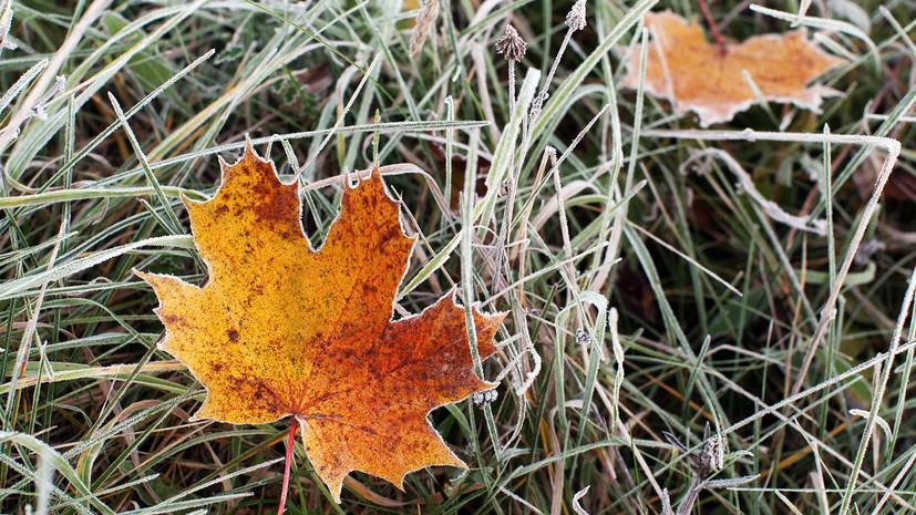 Спасатели предупредили о заморозках в Смоленской области