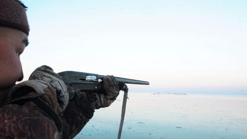 В России общая стоимость всех охотничьих животных возросла в 400 раз