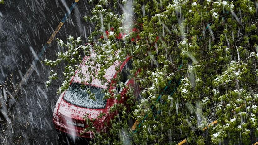 Синоптикипрогнозируют «заснеженные газоны» в Москве