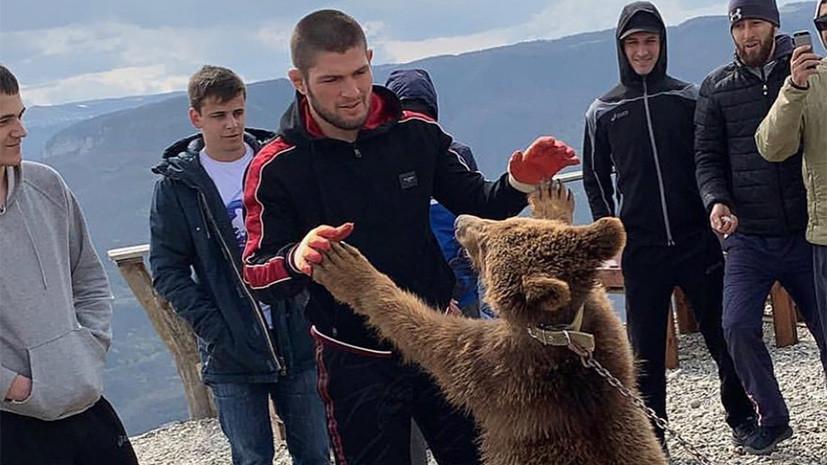 Ковингтон: защитники животных не знают, что Нурмагомедов делает с овцами