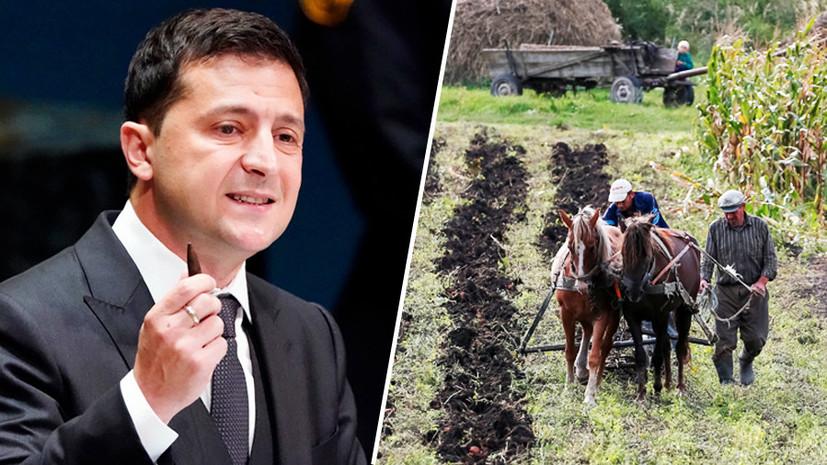 «Угроза суверенитету»: почему на Украине выступают против продажи сельскохозяйственных угодий