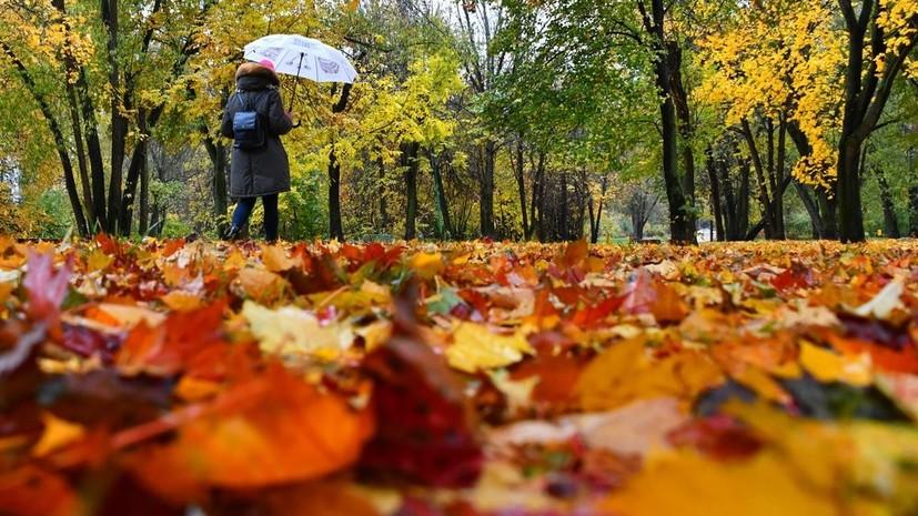 Синоптик рассказал о погоде в Москве в ближайшее время