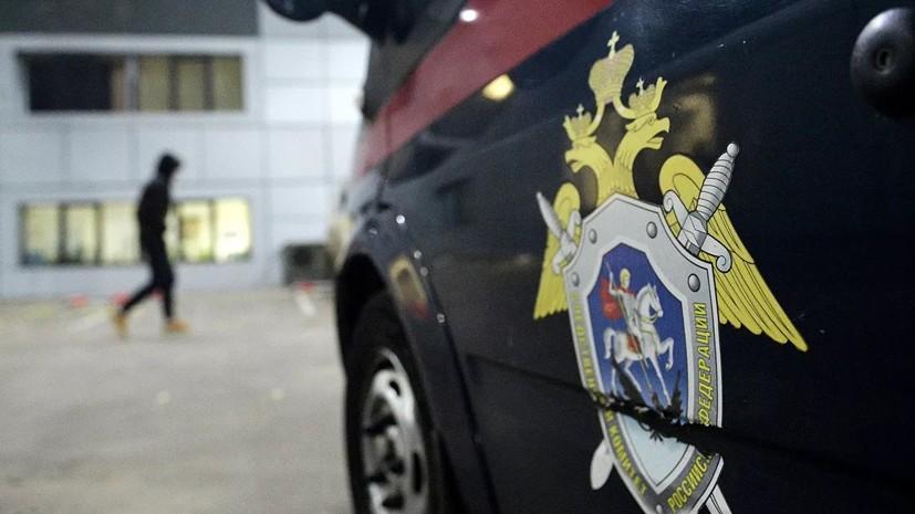 Эксперт заявил, что ошибки в анализе сбитого под Кировом мальчика нет