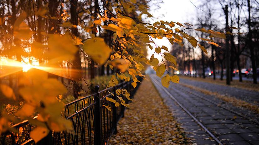 Выше нормы: синоптики анонсировали тёплый ноябрь в европейской части России