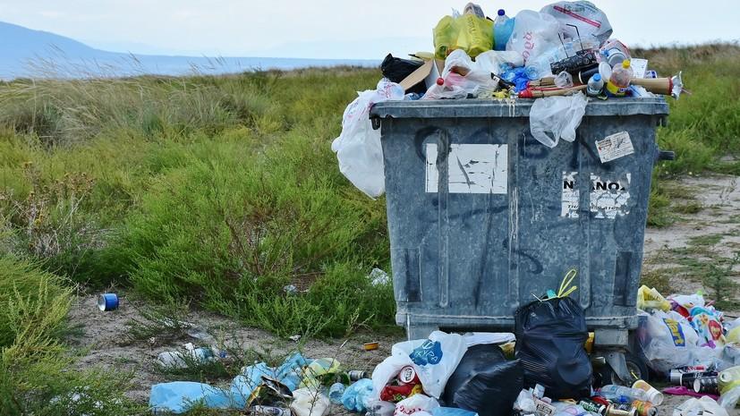 В Госдуме прокомментировали предложение запретить пластиковые пакеты