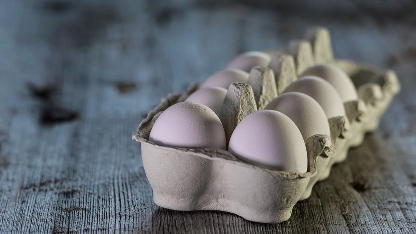 Диетолог рассказала о норме потребления яиц