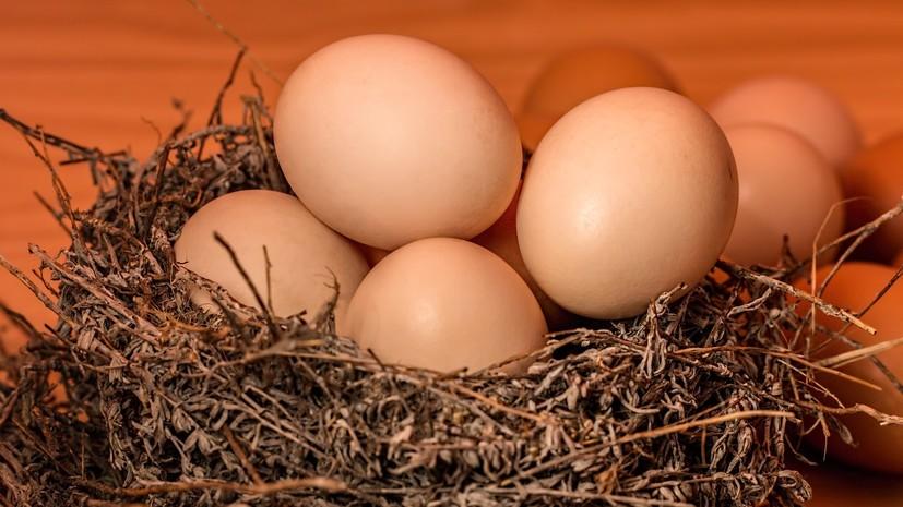 В Минздраве оценили данные о чрезмерном потреблении россиянами яиц