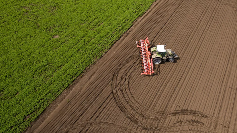 В Подмосковье рассказали об итогах реализации госпрограммы по сельскому хозяйству