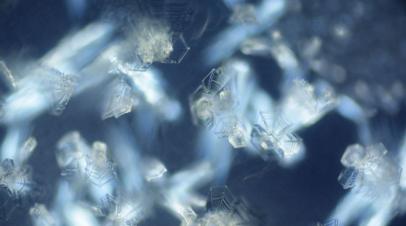 Кристаллы льда под микроскопом