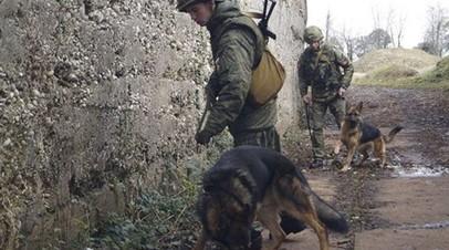 На территории строящегося дома в Волгоградской области нашли боеприпасы времён войны