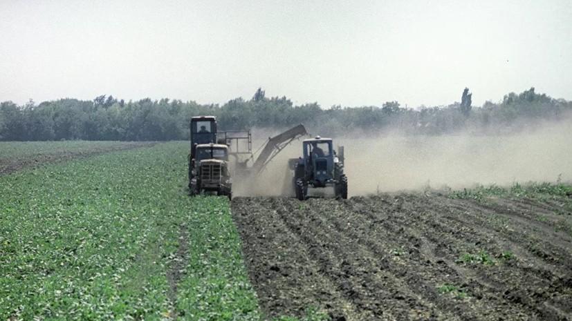 Теневой оборот земли на Украине достигает $410 млн