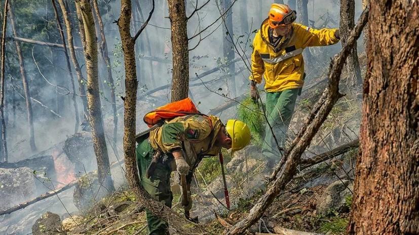 В Сочи увеличили группировку сил для борьбы с лесным пожаром