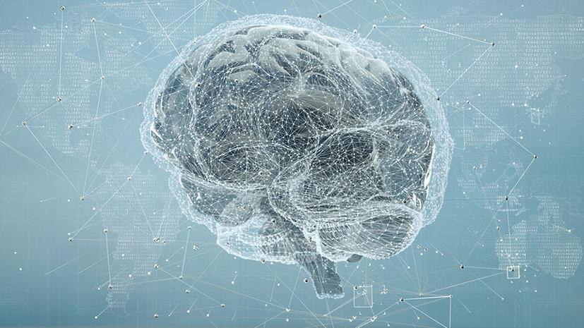 «Мозг мы используем на 100%»: российский нейробиолог — о работе памяти и воспитании гениев
