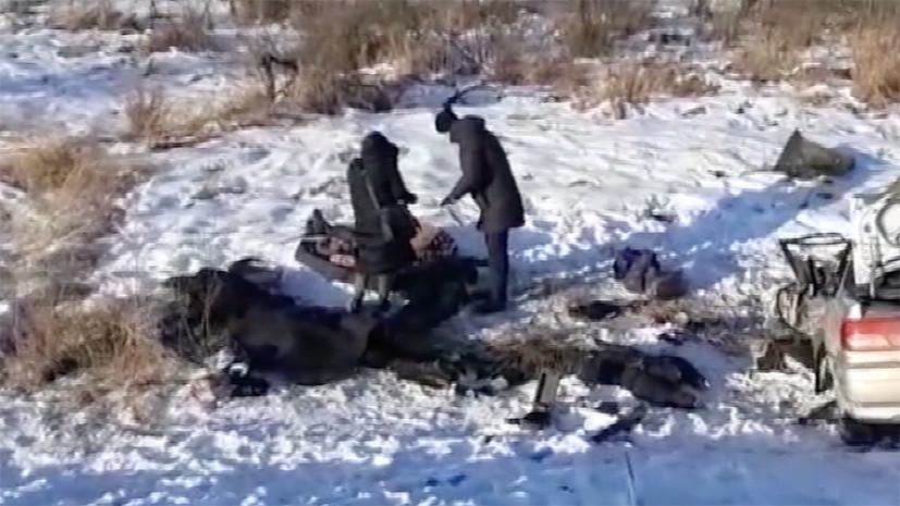 Пять человек погибли в результате ДТП в Приамурье