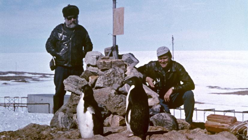 «Континент российского лидерства»: как Антарктида стала территорией мирного сотрудничества и науки