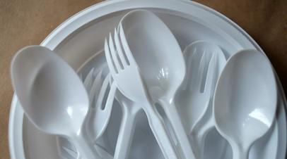 Гринпис предложил запретить изготовление одноразового пластика в России