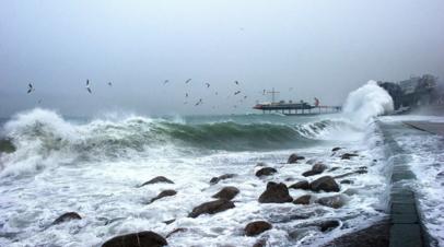 В МЧС предупредили о штормовом ветре в Крыму