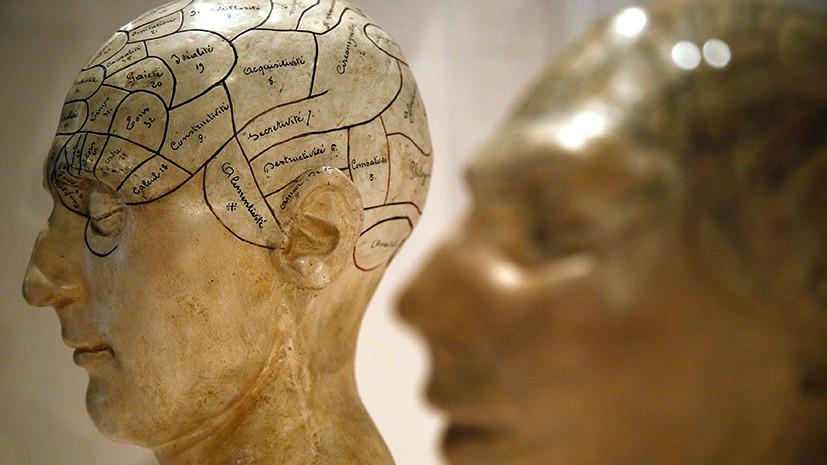 «Разум — это персонализация мозга»: британский нейрофизиолог — о природе сознания и о чувстве любви