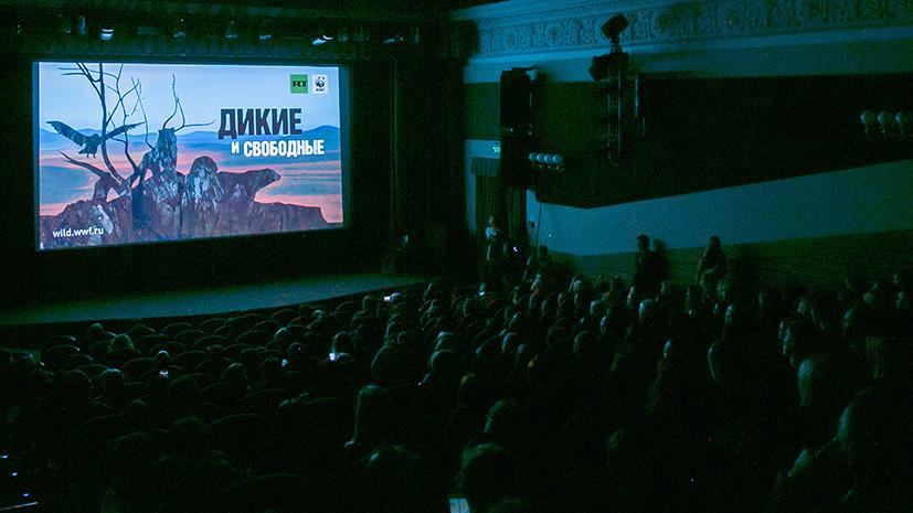 «Большая удача, что мы нашли друг друга»: в Москве показали документальный фильм RT и WWF России «Дикие и свободные»