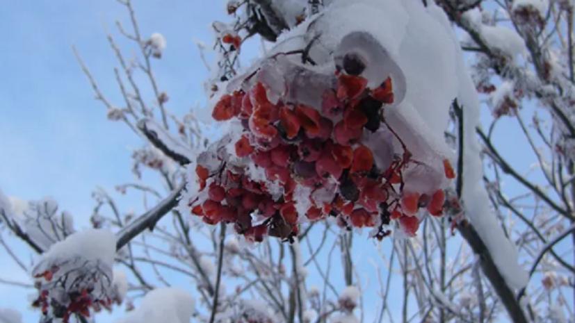Синоптики предупредили о резком похолодании в Ленобласти