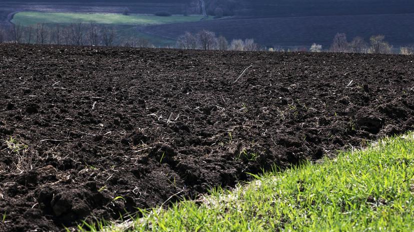 На Украине анонсировали бессрочную акцию протеста против рынка земли