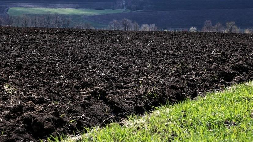 Путин оценил реакцию на закон о земле на Украине