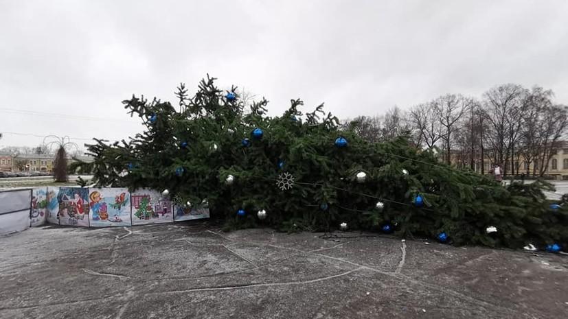 Ветер повалил новогодние ёлки в трёх российских городах