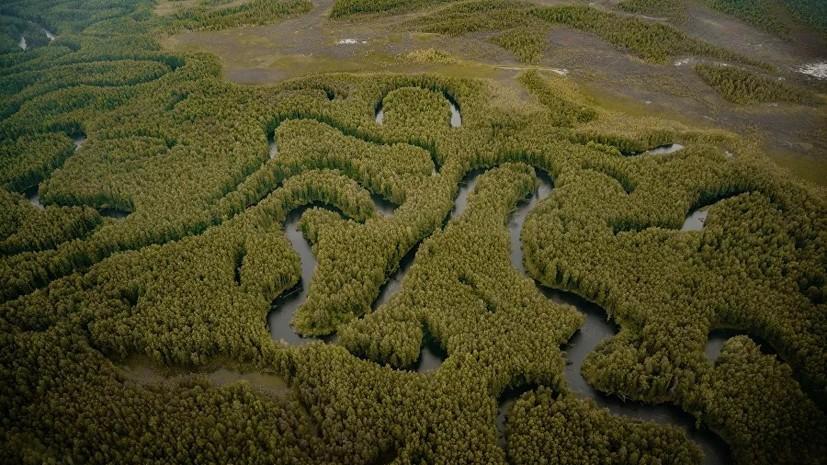 В Росприроднадзоре рассказали об экологической ситуации в регионах