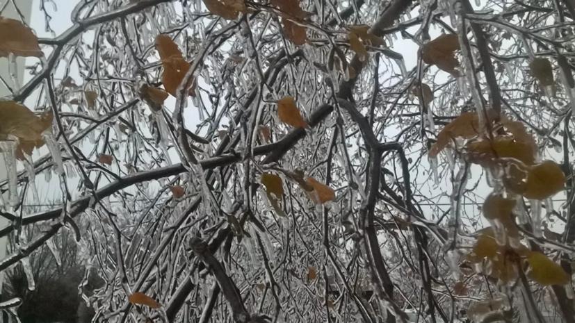 Синоптики рассказали об аномальной погоде в Кирове