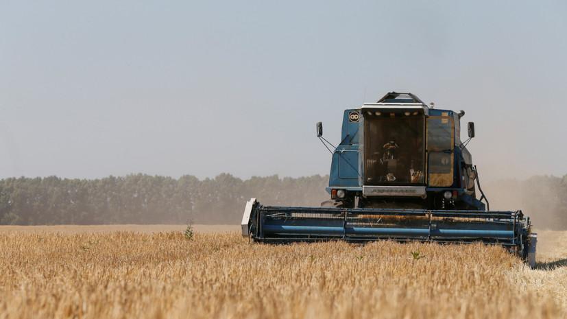 «Подозрение на использование запрещённых пестицидов»: в ЕС подняли вопрос о контроле за качеством украинского зерна